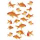 Tấm dán nhà tắm hình đàn cá 15x 23,5cm Kleine Wolke - Đức